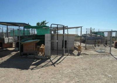 Nächster Stop in Spanien. Ca. 38 Hunde konnten wir hier am vergangenen Sa kastrieren.