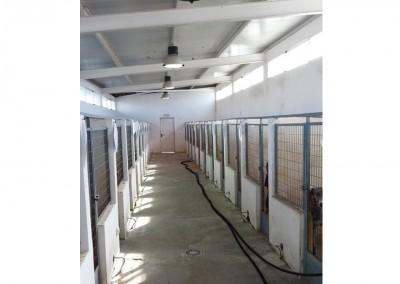 Zwinger im Innenbereich für die Hunde. Jeder hat einen Zugang nach draußen.