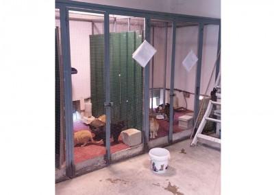 Katzenbereich Innen (Stand: Mai 2014)