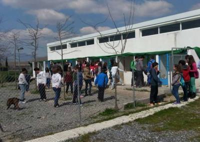 Aufklärungsarbeit von Schulklassen zum Thema Tierschutz