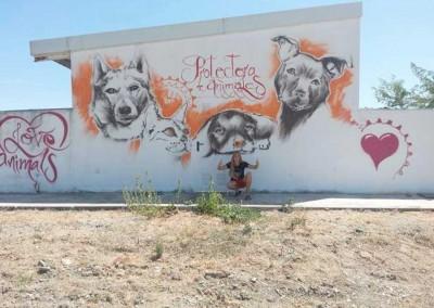 Bekannter Künstler aus Spanien verschönert das Tierheim.