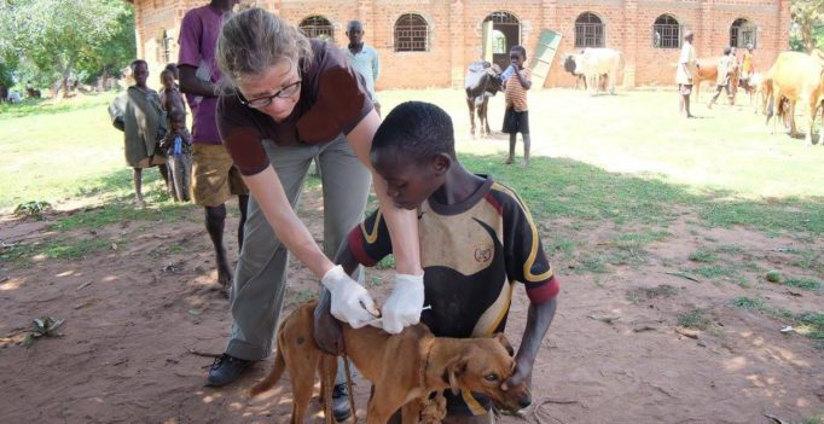 Afrika (Uganda), Juli 2017